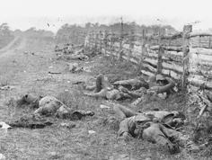 Civil War dead at Sharpsburg, Md.