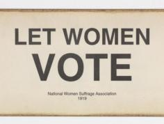 Let Women Vote Banner
