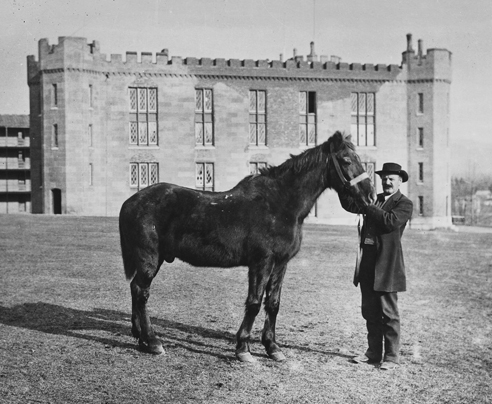 Stonewall Jackson's Little Sorrel at the Virginia Military Institute