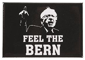 Bernie Sanders 2016 campaign