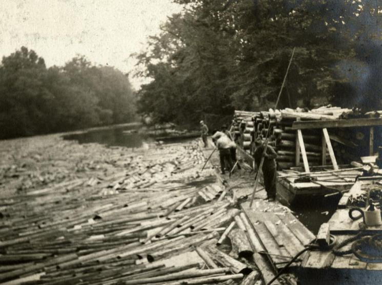 Lumbering, western Virginia, c. 1922
