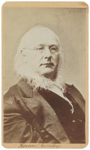 A carte de visite of Democratic Party candidate Horace Greeley