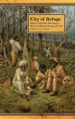City of Refuge: Slavery and Petit Marronage in the Great Dismal Swamp, 1763–1856